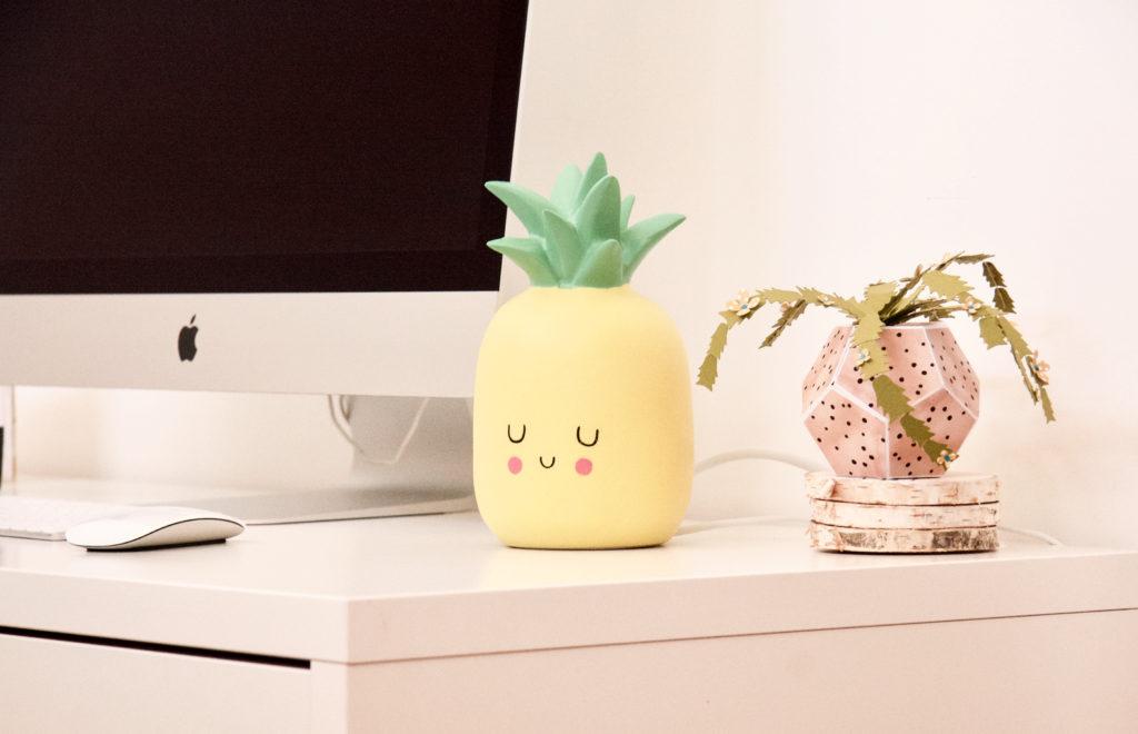cactus e ananas 2
