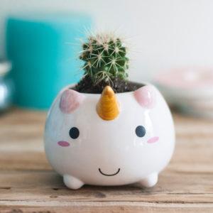 Mini vaso da fiori Unicorno