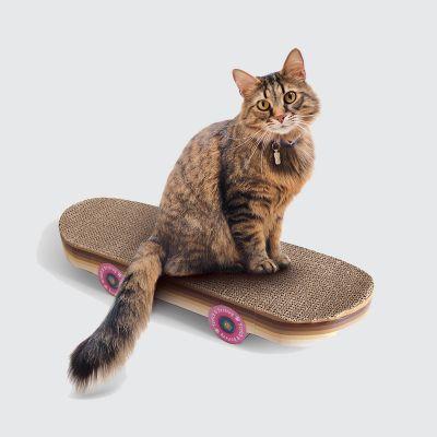 Tiragraffi Skateboard per Gatti