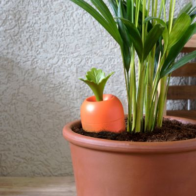 Irrigatore da vaso – Care it