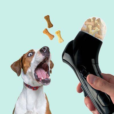 Lancia-Biscotti per Cani