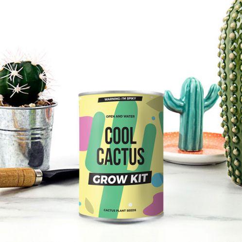 Cactus in Lattina