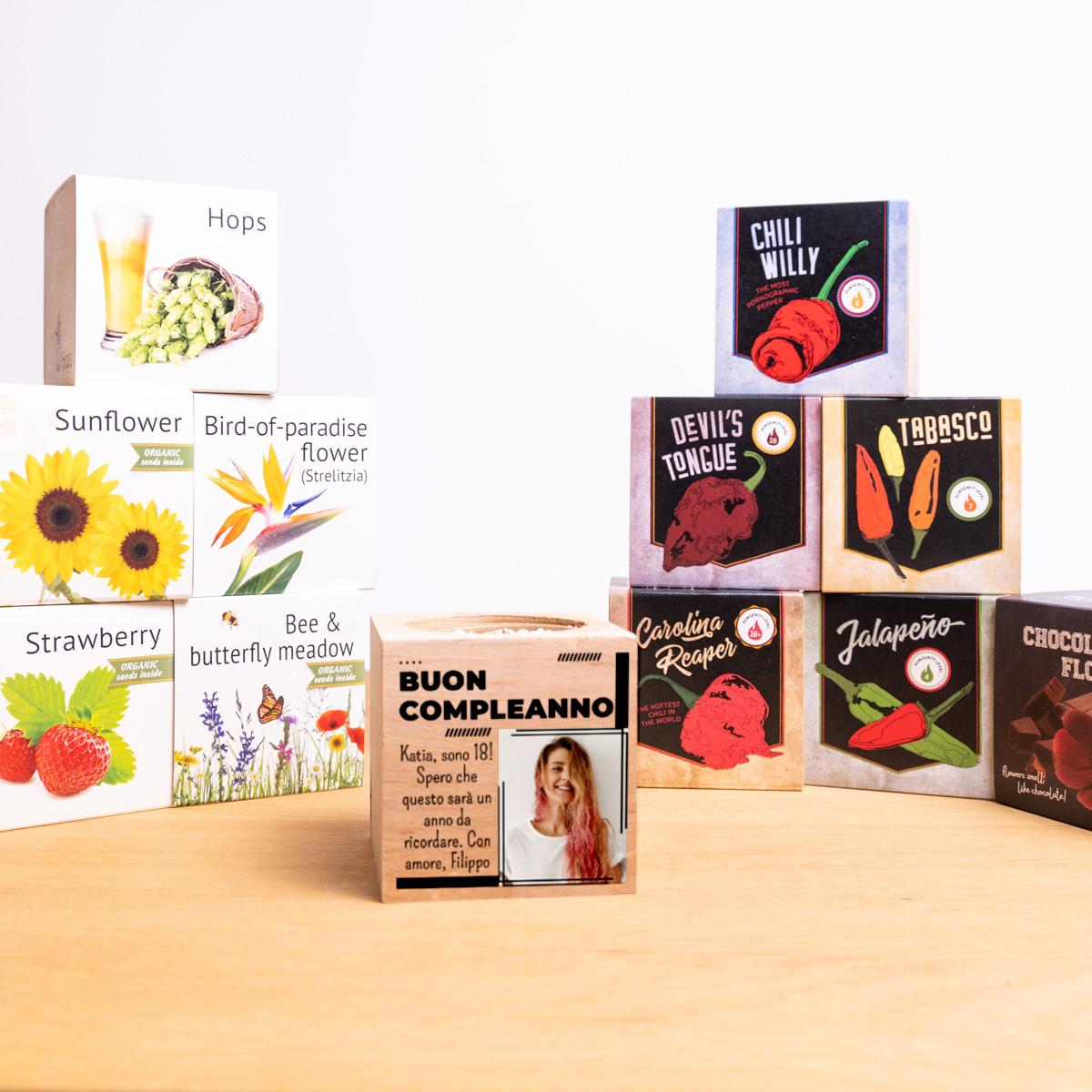 Ecocube - Piante in Cubi di Legno con Foto e Testo