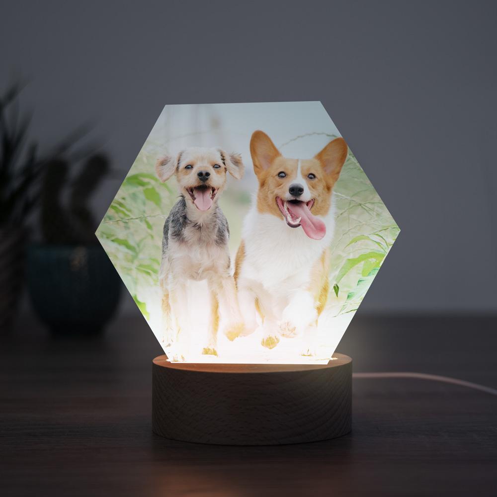 regali per amanti degli animali lampada led personalizzabile con foto