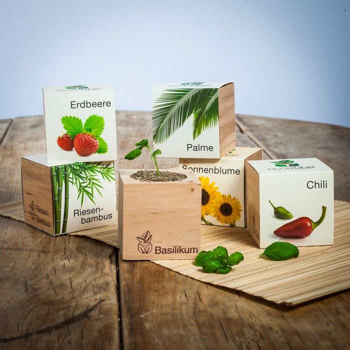 Ecocube - piante in cubi di legno