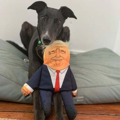 Gioco per Cani Presidente