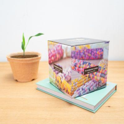 Box di Mais Arcobaleno da Piantare