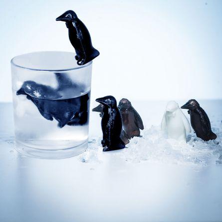 Pinguini Refrigeranti