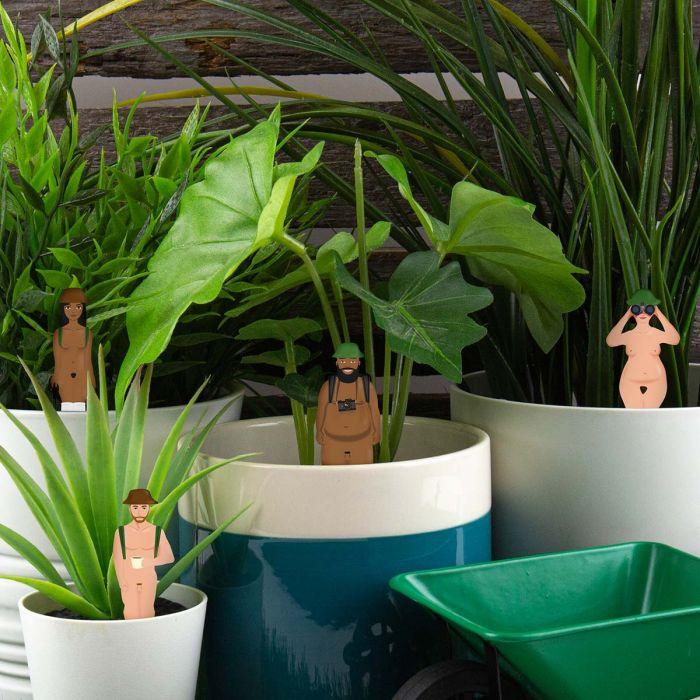 Esploratori Nudi per Piante in Vaso