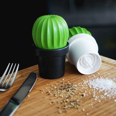 Cucina & Grill - Macina Sale o Pepe Cactus