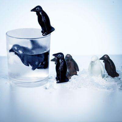 Cucina & Grill - Pinguini Refrigeranti