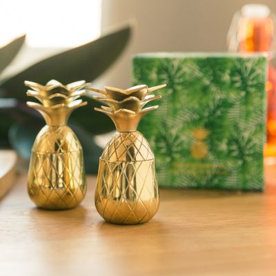 Tazze & Bicchieri - Bicchierini di Metallo Ananas – set da 2