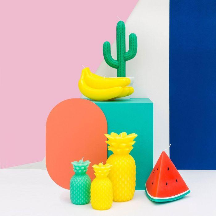 Candela Cactus
