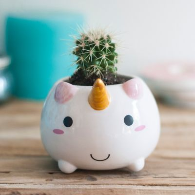 Regali primaverili - Mini vaso da fiori Unicorno