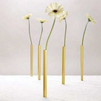 Decorazione - Set 5 Vasi Magnetici