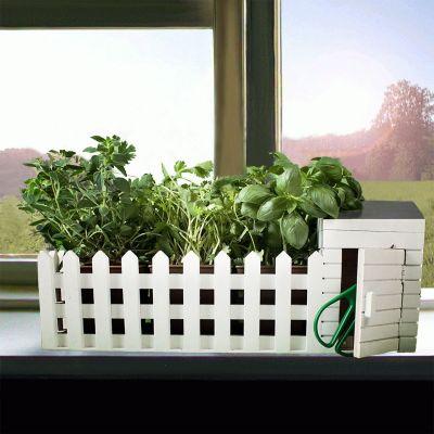 Regali primaverili - Mini Giardino Da interni Con Semi Assortiti