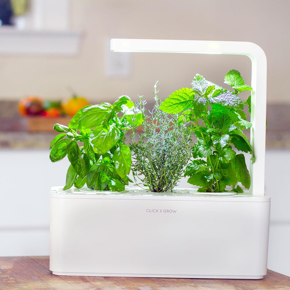 Click & Grow – giardino smart